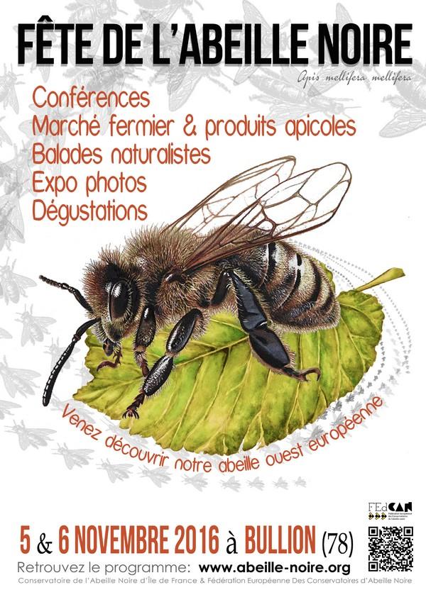 canif fete abeille noire prog p1-13